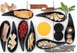 How to Treat Lupus Nephritis with Traditional Chinese Medicine_Kidney Cares Community | health,diet,kidney | Scoop.it