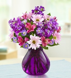 1800flowers coupon codes 10% off Lavender Dreams | Interactive Content | Scoop.it