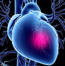 ساعة من الأعمال المنزلية يوميا تقلل الإصابة بقصور القلب | Dental Laboratory Safety | Scoop.it