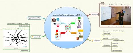 Le blog de Ruisseaumoulins FLE: La carte heuristique, qu'est-ce que c'est? | Medic'All Maps | Scoop.it