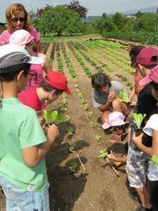La ville qui nourrit ses enfants moins cher et bio | Nouveaux paradigmes | Scoop.it