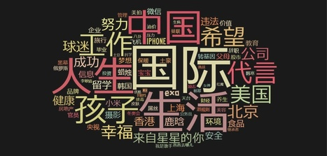 Everything you wanted to know about Chinese social media in 2015 (INFOGRAPHIC)   Social Media Engagement for Financial Services   Scoop.it