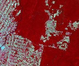 DMCii's detailed satellite imagery helps Brazil stamp out deforestation as it happens | Sustain Our Earth | Scoop.it