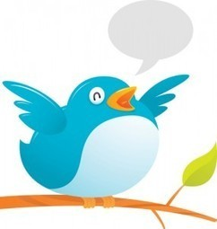 The Art of the 'Twinterview': How to Conduct an Interview on Twitter | journalisme | Scoop.it