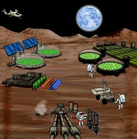 Scientists Believe Synthetic Biology a Key to Long-term Manned Space Missions | Synthetic Biology Technology | Synthetic Biology Technology | Scoop.it