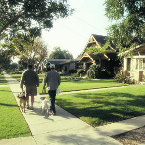 My Virtual Neighbor is a Social Network for Your Street   The Collaborative Society   Scoop.it