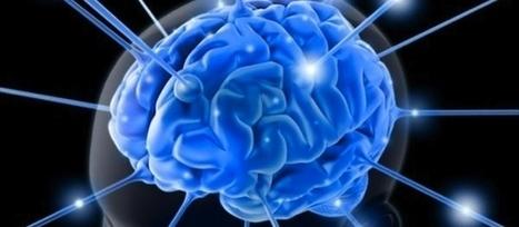 ¿Por qué la inteligencia emocional falla en las organizaciones? | Orientar | Scoop.it