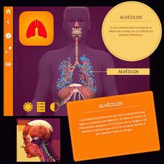 El cuerpo humano en Realidad Aumentada con Arloon Anatomy | InEdu | Scoop.it