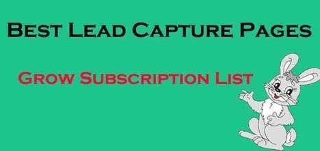Best Lead Capture Pages: Grow Subscription List | blog | Scoop.it