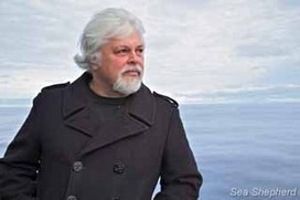 Sea Shepherd :: An Odyssey for the Whales | Life on Earth | Scoop.it
