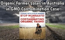 #Australia #corrupt Supreme Court Rules Against Organic Farmer in #GMO Contamination Case #Health | Messenger for mother Earth | Scoop.it