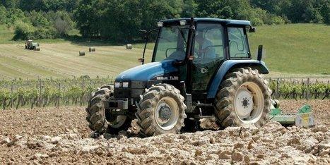 Le suicide des agriculteurs, un phénomène difficile à estimer | Agriculture en Dordogne | Scoop.it