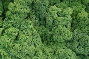 Why OpenStack is like kale — it's cheap, easy to source and good for you - GigaOM | Cloud Tech - Openstack | Scoop.it