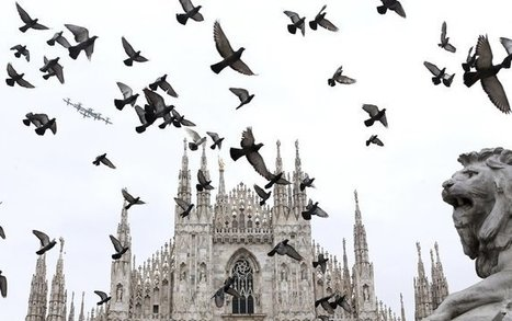 Anticipating a Crowd, Milan's Cathedral Undergoes a Restoration | News in Conservation | Scoop.it