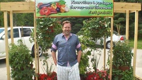 Les Incroyables comestibles : un maire québécois montre l'exemple à suivre. | Confidences Canopéennes | Scoop.it