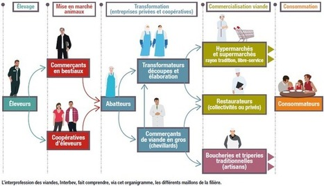 Opération transparence - LSA | Concurrence | Scoop.it