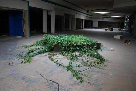 Completely Surreal Photos Of America's Abandoned Malls (Rolling Acres & Randall Park) | AP HUMAN GEOGRAPHY DIGITAL  STUDY: MIKE BUSARELLO | Scoop.it