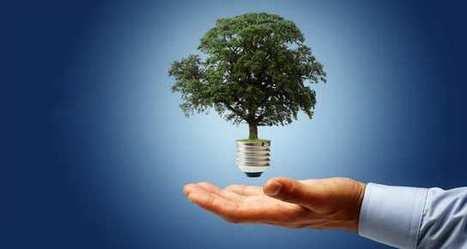 L'ère du co: cocréer avec le client autour de la RSE   Entreprise et innovation   Scoop.it