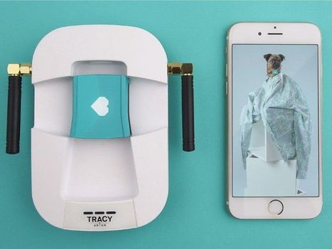 Tracy | Dog trackers based on loyalty | Quantified Pet | Scoop.it