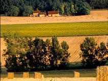 Mise au vert : la campagne vous ouvre les bras en Touraine ! | Vacances en Touraine Val de Loire (37) | Scoop.it