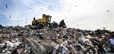 Carbon Trust Launches Zero-Waste-to-Landfill Certification | #CircularEconomy & #Waste | Scoop.it