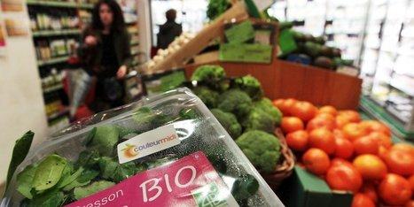 Agriculture : cette année, le bio cartonne dans le Sud-Ouest | Agriculture en Dordogne | Scoop.it