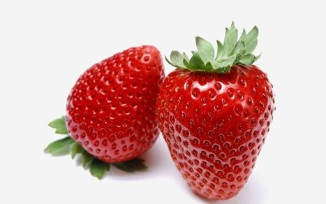 10 أطعمة تخلص الجسم من السموم .. تعرف عليها | www.arab-muslim.com منتديات عرب مسلم | Scoop.it