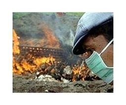 Indonesia says it has found more virulent bird flu strain | Sustain Our Earth | Scoop.it