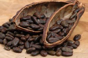 What's really in that luscious chocolate aroma? | Food issues | Scoop.it