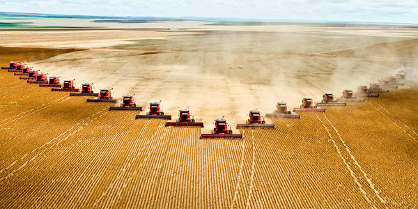 Contemporary agriculture is burning up our planet