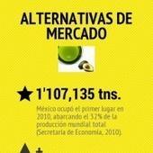 Alternativas de mercado   Producción, procesamiento e impacto del aguacate en México   Scoop.it