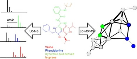 Combining Stable Isotope Labeling and Molecular Networking for Biosynthetic Pathway Characterization   Science   Scoop.it