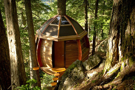 La maison dans les arbres par Joel Allen | Efficycle | Scoop.it