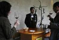 Vino, una proposta per norme più leggere - Made in E-R - ANSA.it | vino | Scoop.it