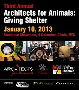 """Third Annual """"Architects for Animals: Giving Shelter"""" Offers Creative Comfort for Feral and Community Cats 