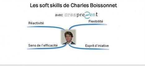 Portrait soft skills de Charles Boissonnet : Réactivité, flexibilité, sens de l'efficacité, esprit d'initiative   Portraits soft skills   compétences douces   Scoop.it