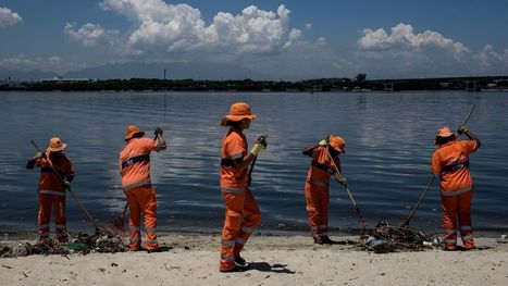 For Olympic Sailors And Fishermen Alike, Rio's Dirty Bay Sets Off Alarms | VCE Environmental Science | Scoop.it