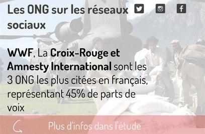 [etude] Les ONG sur les réseaux sociaux en France | Digimind : Logiciels de veille, e-réputation et Social Media Monitoring | Relations publiques online | Scoop.it
