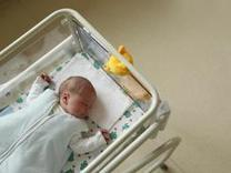 Americans put off having babies amid poor economy | Geography Education | Scoop.it