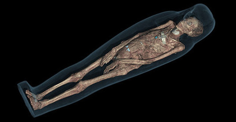 Museum teams up with Samsung to render mummies in 3D (video)   Culture augmentée - Augmented culture   Scoop.it