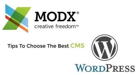 Free & Premium Responsive WordPress Themes 2016   Free Premium WordPress Themes   Scoop.it