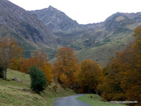 Les ors de la vallée - Montagne Pyrénées | Vallée d'Aure - Pyrénées | Scoop.it