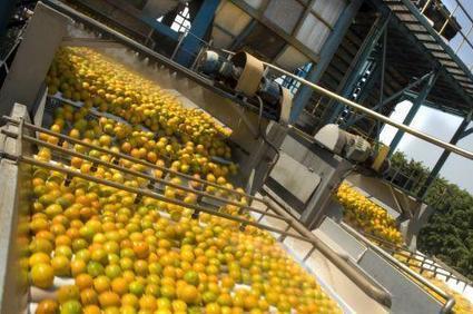 Le Nigéria mettra 30 milliards de nairas d'ici 2018 dans le hub agroindustriel de Kwali | Panorama de presse Afrique Anglophone & Lusophone : Afrique du Sud, Angola, Ethiopie, Ghana, Kenya, Mozambique, Nigéria, Ouganda, Soudan du Sud, Tanzanie | Scoop.it