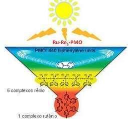Folha artificial captura energia solar e gera eletricidade   tecnologia s sustentabilidade   Scoop.it