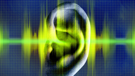 The Real Sounds Of Hearing Loss   Sound Engineering- Aspects 2&3   Scoop.it