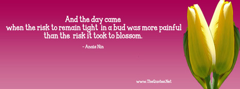Anais Nin Quotes | TheQuotes.Net - Motivational Quotes | Motivational Text Quotes | Scoop.it