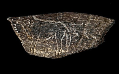 Ice Age Art: Arrival of the Modern Mind - in pictures   Anthropology and Archaeology   Scoop.it