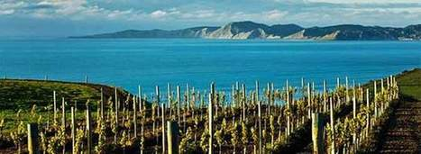 New Zealand Throws Money at Lower-Alcohol Wines | Wine News & Features | Grande Passione | Scoop.it
