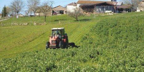 Convaincre des agriculteurs de passer au bio | Agriculture en Dordogne | Scoop.it