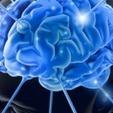 Neuroscience For Insight Into The Social Customer   BI Revolution   Scoop.it
